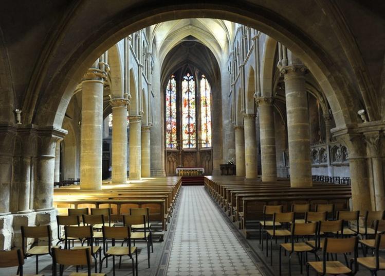 Visite Libre De L'édifice à Metz