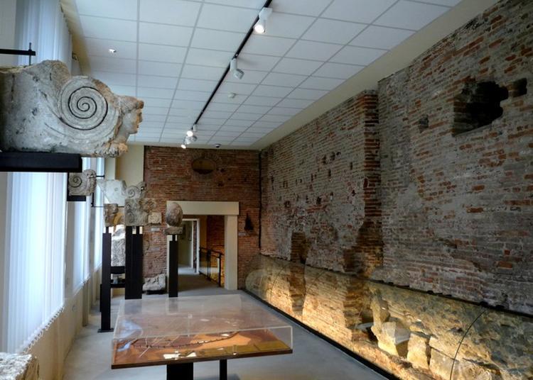 Visite Libre De L'espace Muséographique G. Baccrabère, Rempart Gallo-romain, Fresque Marcel Lenoir. à Toulouse