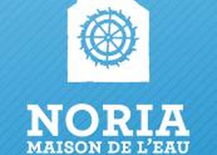 Visite Libre De L'espace Noria, Maison De L'eau à Saint Jean du Bruel