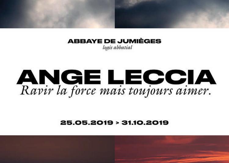 Visite Libre De L'exposition Ange Leccia. Ravir La Force Mais Toujours Aimer. à Jumieges