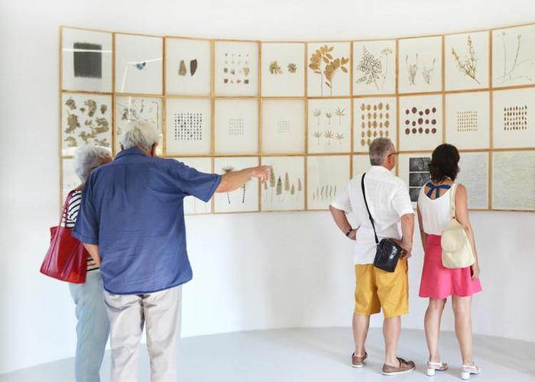 Visite Libre De L'exposition Bis Repetita Placent Et Contrepoint, Gérard Traquandi & La Donation Albers-honegger à Mouans Sartoux