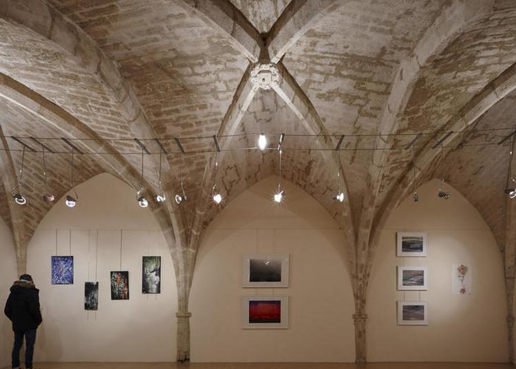 De Géraldine Goyet : Art Contemporain, Installation Audio Vidéo Et Impressions à Montpellier