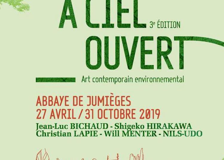 Visite Libre De L'exposition Jumièges, à Ciel Ouvert à Jumieges