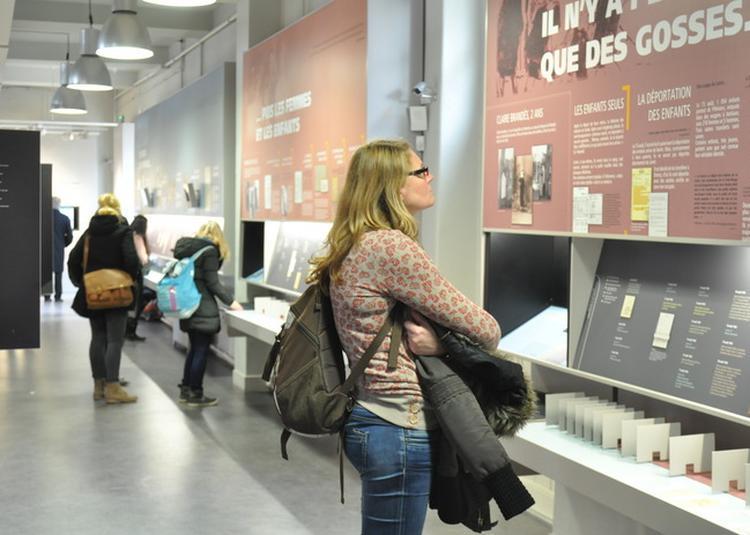 Visite Libre De L'exposition Permanente à Orléans