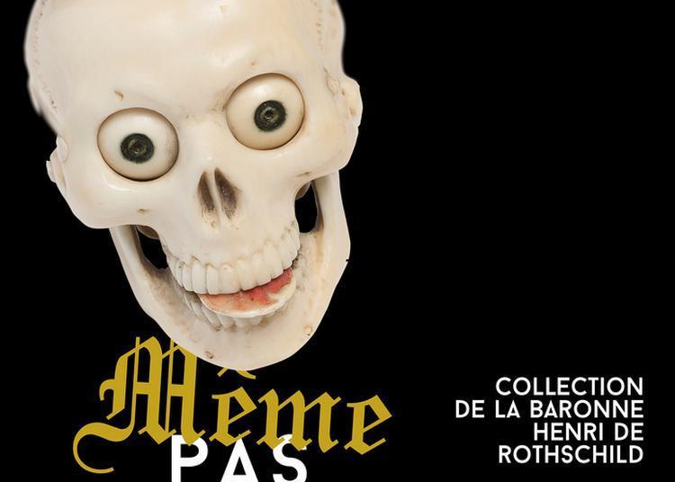 Visite Libre De L'exposition Temporaire Même Pas Peur ! Collection De La Baronne Henri De Rothschild. Vanité D'hier Et D'aujourd'hui à Toulouse