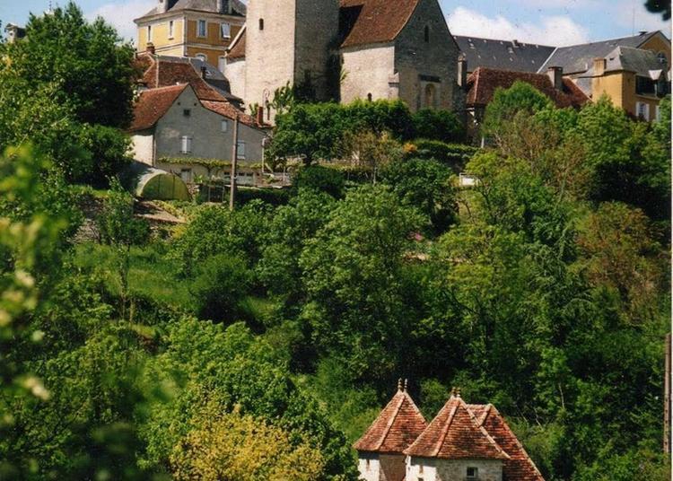 Visite Libre De La Bastide De Montfaucon