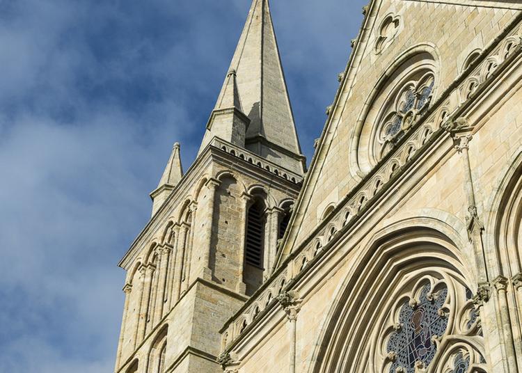 Visite Libre De La Cathédrale Saint-pierre à Vannes