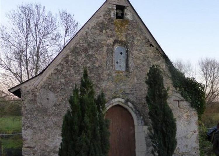 Visite Libre De La Chapelle Aux Grenouilles à Mire