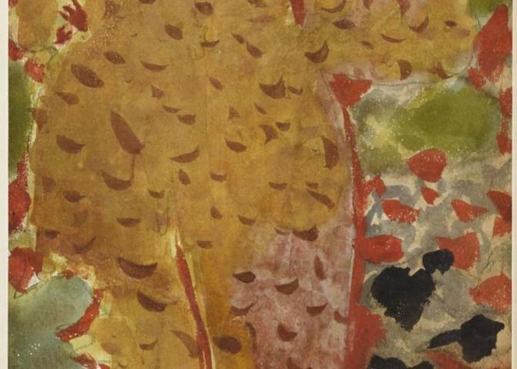 Visite Libre De La Collection Permanente De Peintures, Bronzes Et Objets D'art Du Xvie Au Milieu Du Xxe Siècles, Dont 35 Tableaux De Bonnard à Toulouse