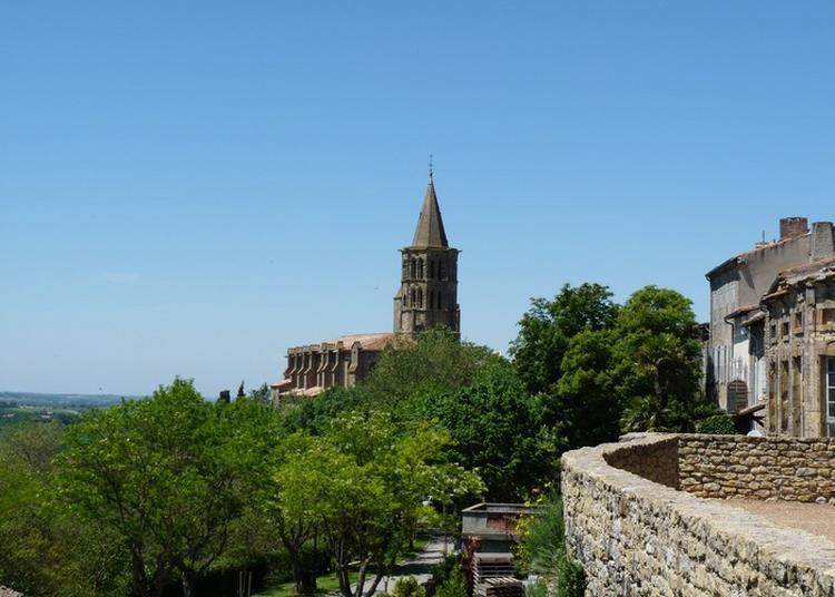 Visite Libre De La Collégiale à Saint Felix Lauragais