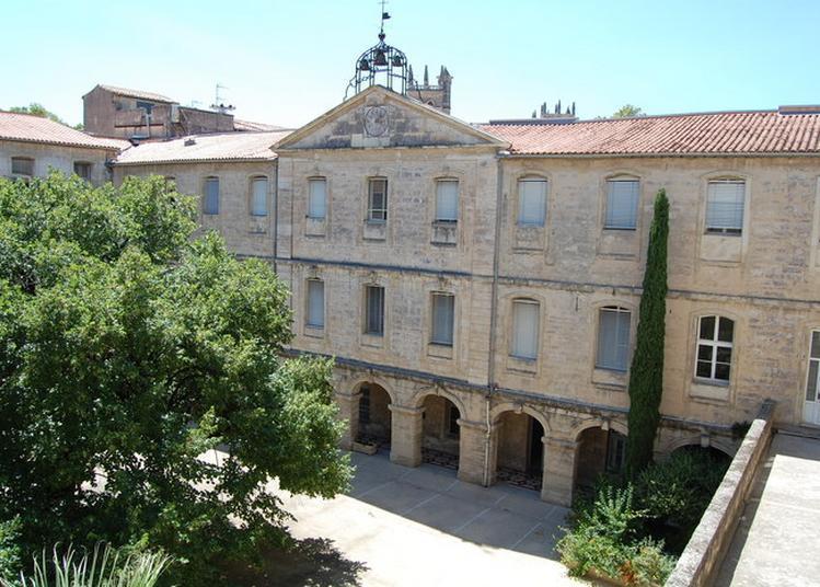 Visite Libre De La Cour Soulages à Montpellier
