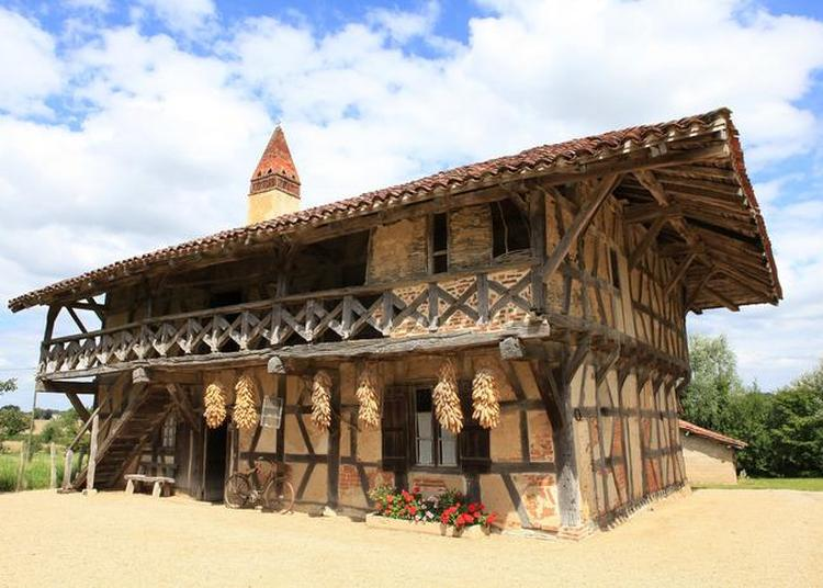 Visite Libre De La Ferme - Musée De La Forêt. à Courtes