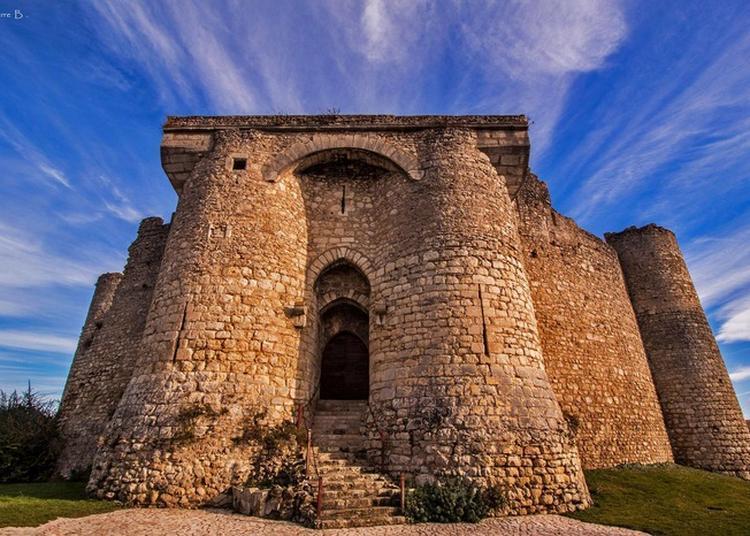 Visite Libre De La Forteresse Médiévale De Billy.