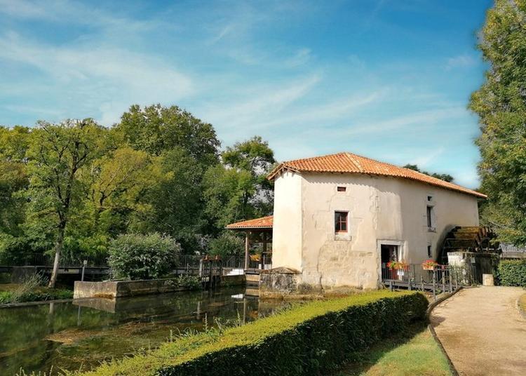 Visite Libre De La Maison De La Dronne à Montagrier