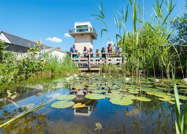 Visite Libre De La Maison Des Pêcheurs Du Lac De Grand Lieu à La Chevroliere