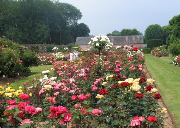 Visite Libre De La Roseriae, Du Potager Et Du Labyrinthe à Ermenouville