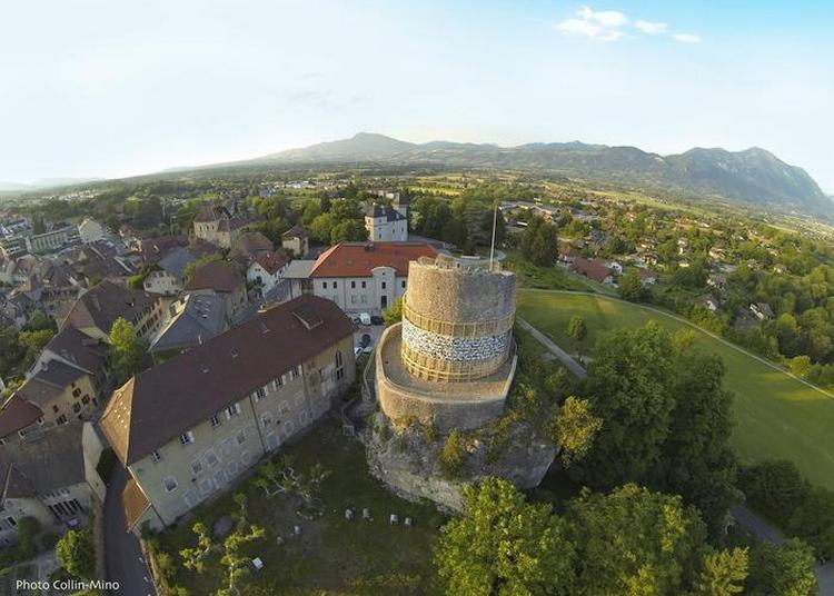 Visite Libre De La Tour Des Comtes De Genève. à La Roche sur Foron
