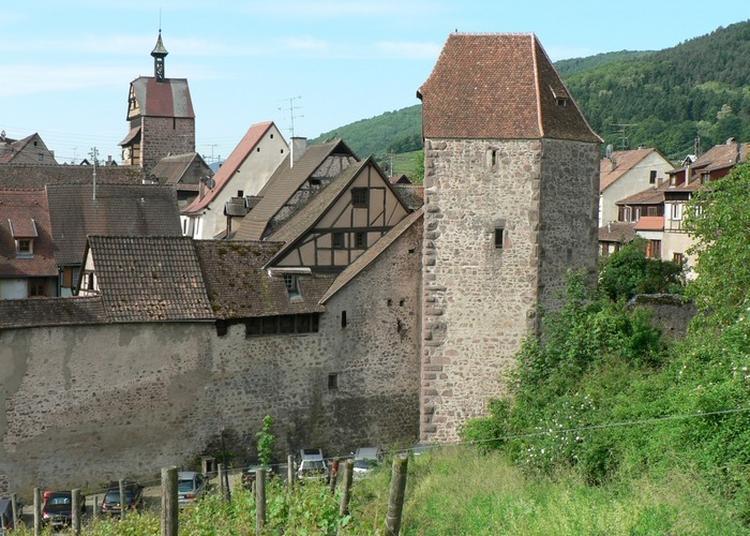 Visite Libre De La Tour Des Voleurs Avec Maison De Vigneron à Riquewihr