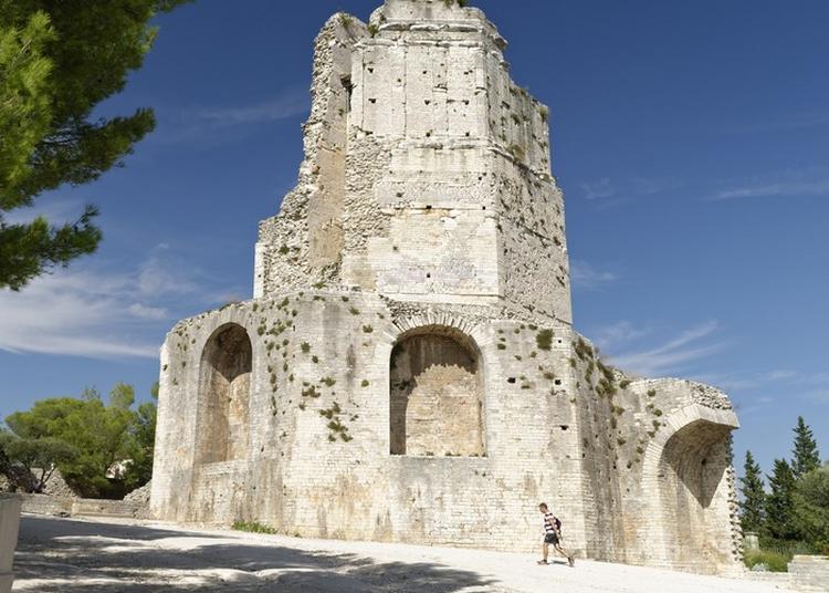 Visite Libre De La Tour Magne à Nimes