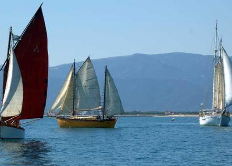 Visite Libre Des Bateaux Du Patrimoine à Canet en Roussillon