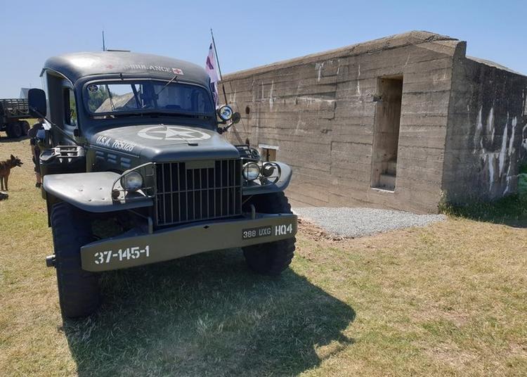 Visite Libre Des Bunkers De La Pointe Du Roc à Granville
