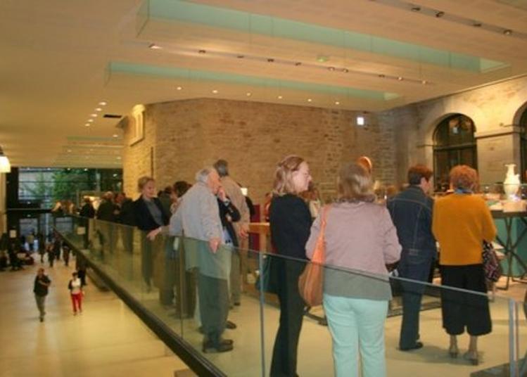 Visite Libre Des Collection - Musée National Adrien Dubouches à Limoges