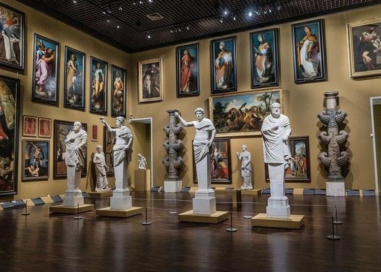 Visite Libre Des Collections à Orléans