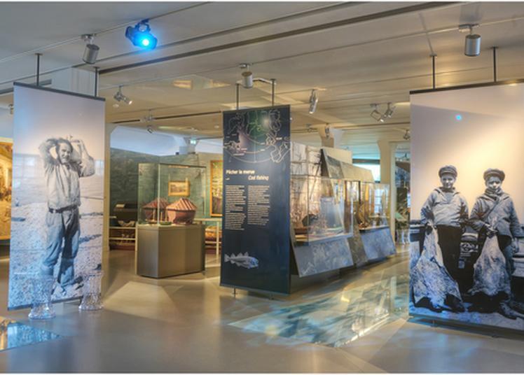 Visite Libre Des Collections Permanantes Et De L'exposition Martine Dubilé, Ancrages à Fecamp