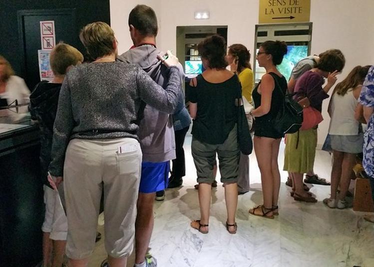Visite Libre Des Collections Permanentes à Agde