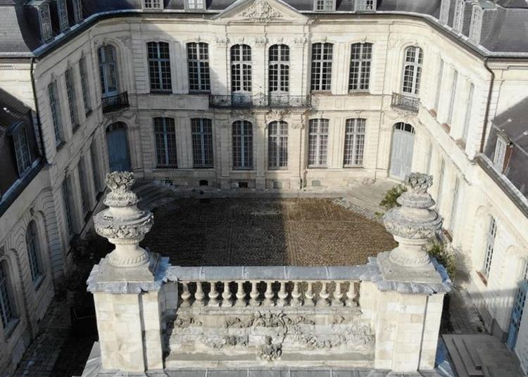 Visite Libre Des Collections Permanentes à Saint Omer