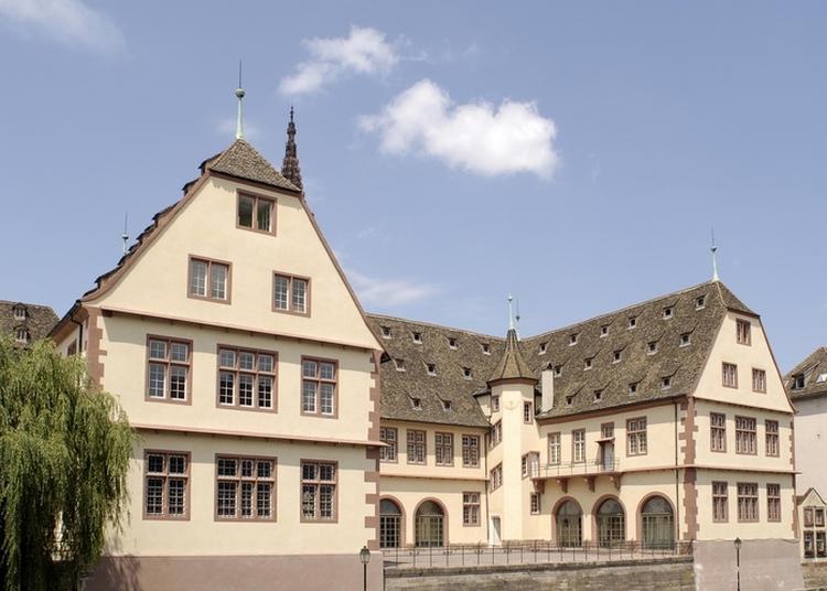 Visite Libre Des Collections Permanentes Du Musée Historique à Strasbourg
