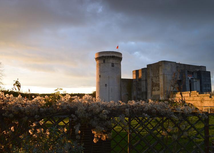 Visite Libre Des Donjons Du Château Guillaume-le-conquérant à Falaise