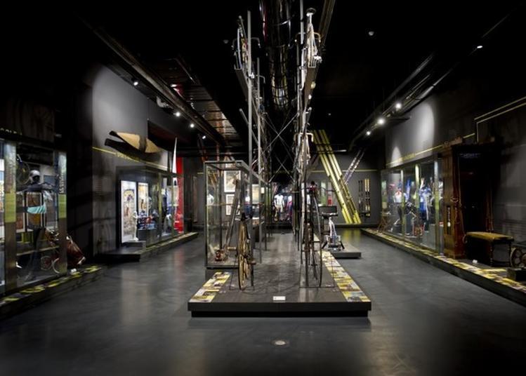 Visite Libre Des Expositions à Nice