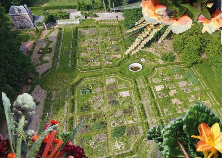 Visite Libre Des Jardins à Daubeuf Serville
