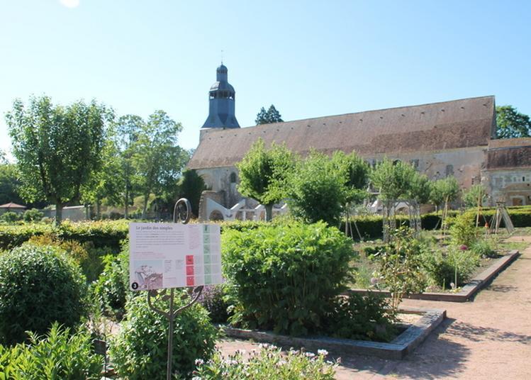 Visite Libre Des Jardins Thématiques à Thiron Gardais