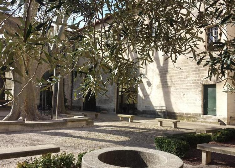 Visite Libre Du Bâtiment à Avignon