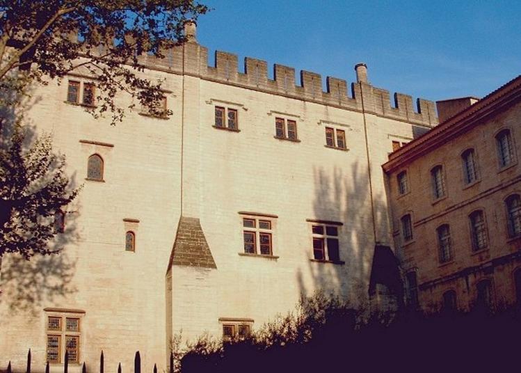 Visite Libre Du Bâtiment - Bibliothèque Ceccano à Avignon