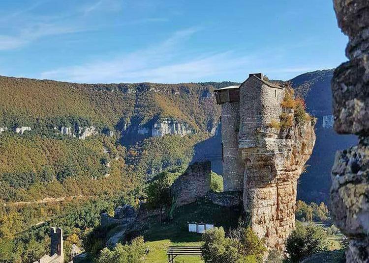 Visite Libre Du Château De Peyrelade à Riviere sur Tarn