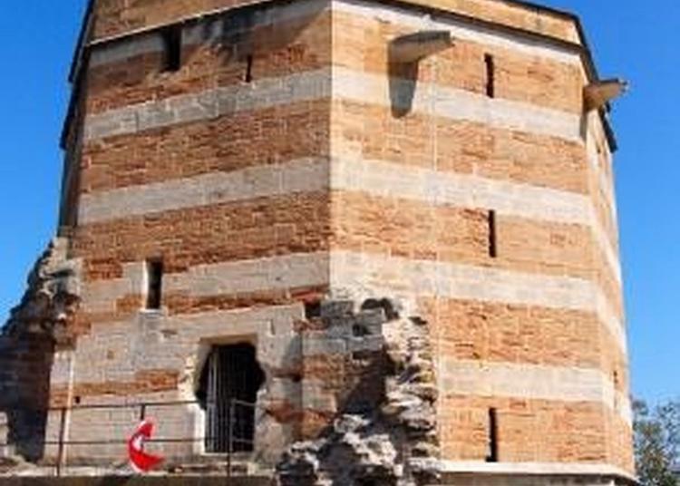 Visite Libre Du Château-fort De Trévoux. à Trevoux