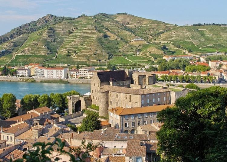 Visite Libre Du Château-musée Et De L'exposition à Tournon sur Rhone