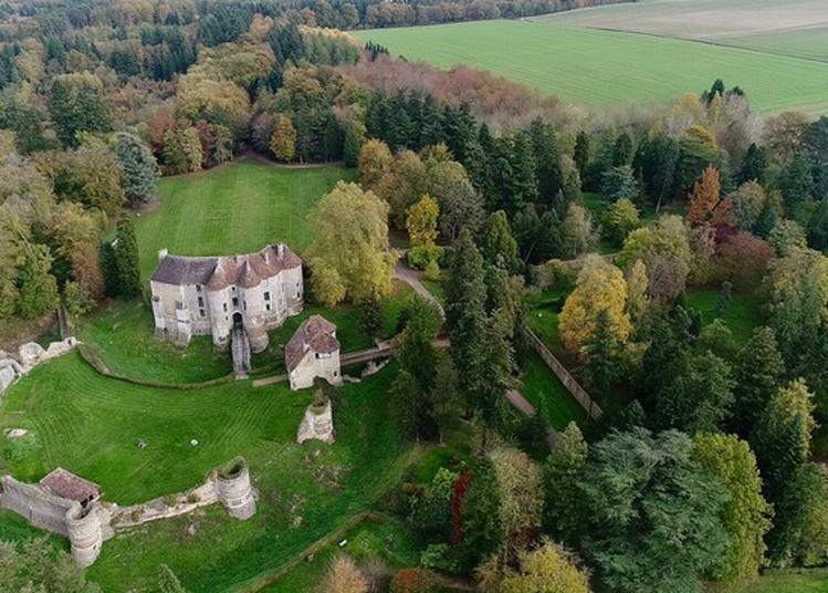 Visite Libre Du Domaine D'harcourt, Château Et Arboretum à Harcourt