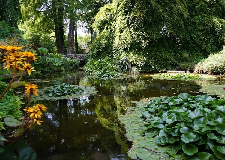 Visite Libre Du Jardin D'horticulture à Reims