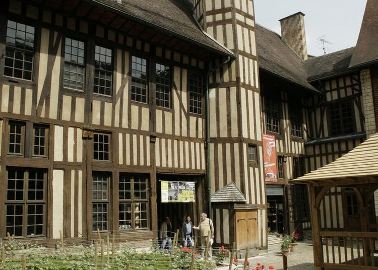 Visite Libre Du Jardin éphémère à Troyes