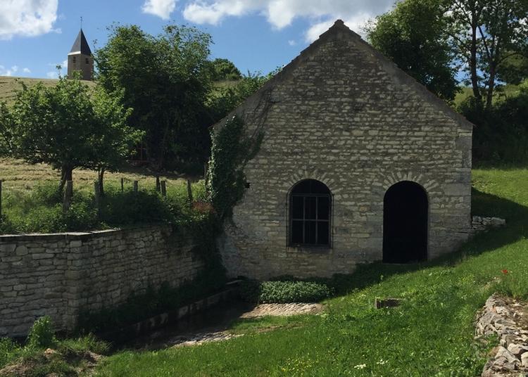 Visite Libre Du Lavoir De Jouancy