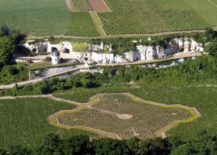 Visite Libre Du Logis Seigneurial Troglodytique Et Dégustation Des Vins Du Domaine Filliatreau à Turquant