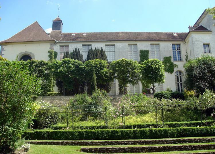 Visite Libre Du Musée à Saint Germain en Laye