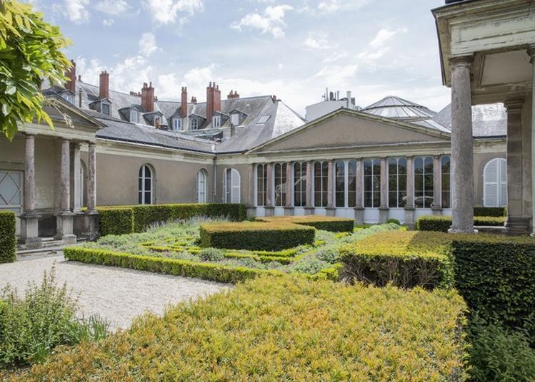 Visite Libre Du Muséum à Angers