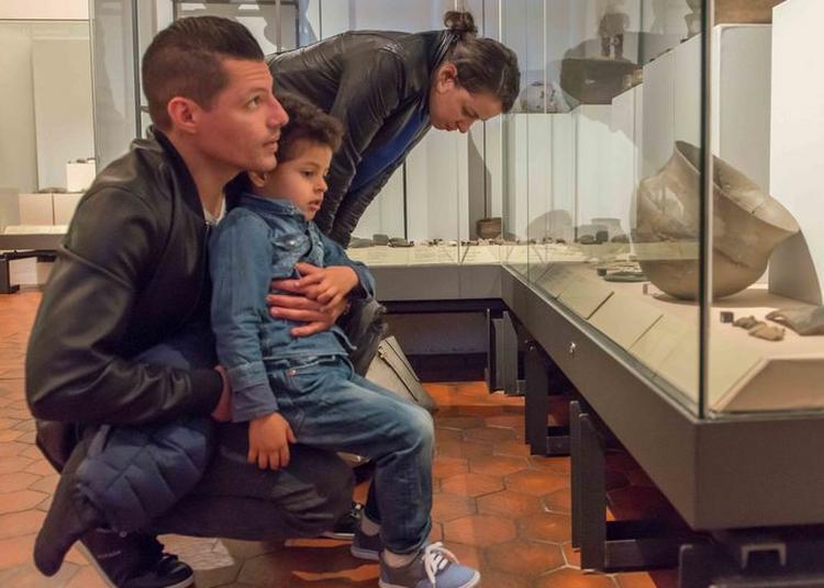 Visite Libre Du Musée Archéologique à Strasbourg