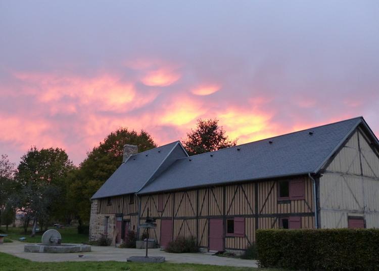 Visite Libre Du Musée Du Poiré Et Lumières Sur Notre Patrimoine Géologique à Barenton