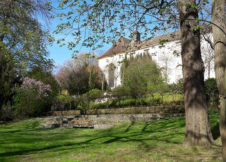 Visite Libre Du Musée Et De Son Jardin à Saint Germain en Laye